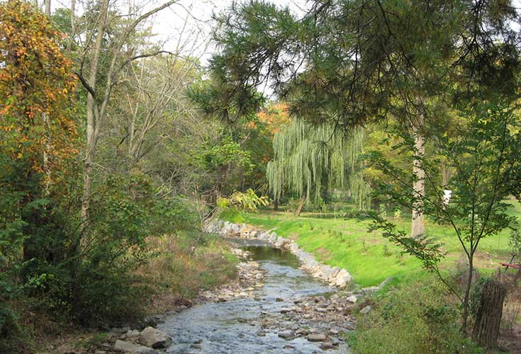 angelica-creek-park-and-trail