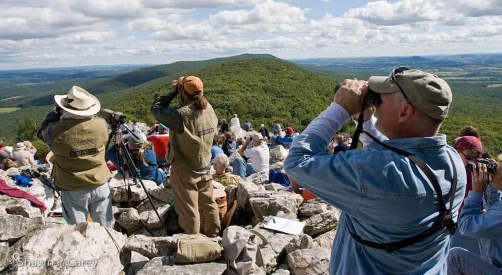 Bird watchers gather at the top of the overlook and gaze through binoculars to watch the early migration of Hawks