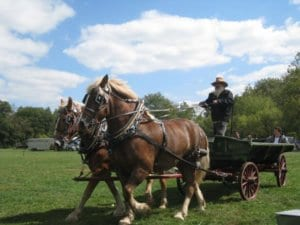 A man stands in a wagon as he drives a team of work horses across an open field of grass.